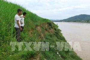Báo động tình trạng xuống cấp tuyến đê tả sông Lô