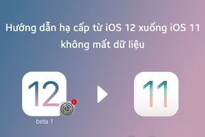 Hướng dẫn hạ cấp iOS 12 về iOS 11 không mất dữ liệu ứng dụng