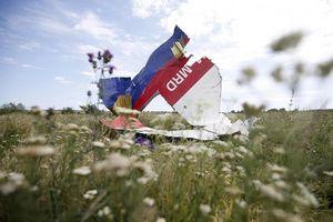 EU kêu gọi Nga nhận trách nhiệm vụ MH17