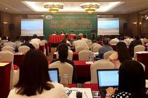 Đại hội đồng cổ đông Quốc Cường Gia Lai (QCG): Cổ đông nóng lòng với Dự án Phước Kiển