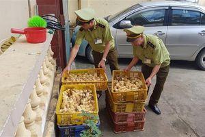 Lạng Sơn: Bắt giữ 1.200 con gà giống và 490 bao thuốc lá lậu