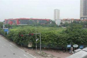 Tháp tài chính Quốc tế của Bảo Việt thành bãi cỏ hoang
