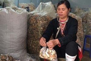 Lương y Triệu Thị Hòa – bậc thầy trị bệnh thoái hóa, thoát vị đĩa đệm