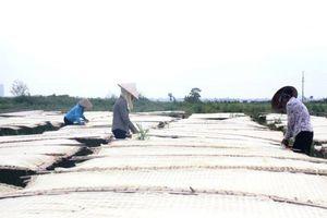 Huyện Hoài Đức: Phát triển làng nghề gắn với bảo vệ môi trường