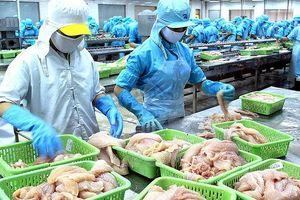 Nỗ lực gỡ bỏ thẻ vàng của Liên minh châu Âu đối với thủy sản Việt Nam