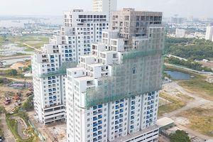 Tập đoàn Đất Xanh nói gì về việc mua đất công giá rẻ?