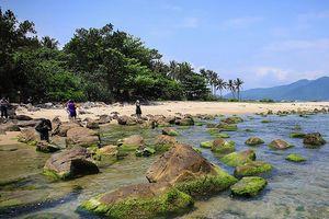 Đà Nẵng: Điều chỉnh nhiều dự án lớn ven biển để phục vụ dân sinh
