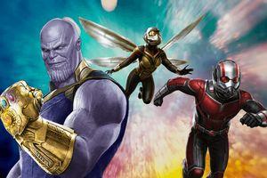 'Sững người' trước after-credit của 'Ant-Man and the Wasp': Bức tranh gia đình vui vẻ bị Infinity War phá hoại