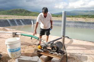 Tuy Phong (Bình Thuận): Cần làm rõ những bất cập trong trong việc cho thuê đất