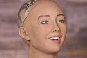 Giám đốc AI Facebook: 'Robot Sophia chỉ là trò lừa bịp'