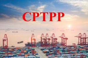 Malaysia sẽ thua Việt Nam về dòng đầu tư thương mại nếu không tham gia CPTPP