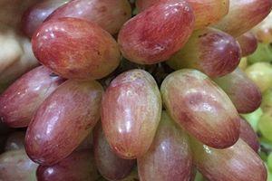 Tận mục giống nho ba màu Ninh Thuận hút khách Việt