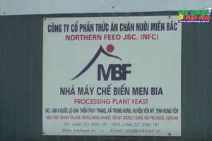Hưng Yên: Xử lý nghiêm hành vi xả thải gây ô nhiễm môi trường đối với Công ty Cổ phần thức ăn chăn nuôi miền Bắc