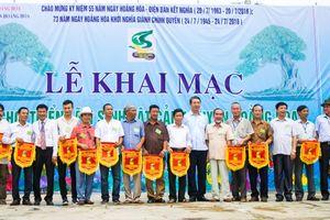 Thanh Hóa: Hội chợ và triển lãm Sinh Vật Cảnh huyện Hoằng Hóa lần thứ nhất năm 2018