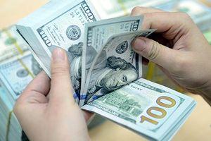 Tỷ giá ngoại tệ ngày 20/7: USD tăng mạnh trở lại