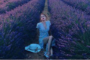 Hương Giang chưa bao giờ đẹp đến thế khi khoe dáng giữa cánh đồng lavender lãng mạn