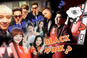 Clip: Phản ứng của Noo Phước Thịnh khi bị fan 'bóc mẽ' thích… BigBang, BlackPink