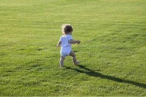 Càng sớm biết đi trẻ càng thông minh, tài giỏi hơn người?