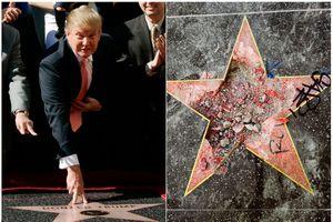 Ngôi sao của Tổng thống Trump trên Đại lộ Danh vọng lại bị phá tan tành