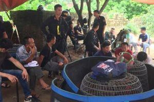 Bắc Giang: Bắt giữ hơn 60 đối tượng đang say sưa đá gà