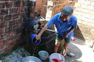 Phù Cát (Bình Định): Chăn nuôi heo gây ô nhiễm môi trường, dân bức xúc