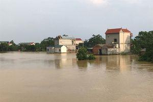 Nước lên cao đe dọa đê tả Bùi, Hà Nội sẵn sàng di dời 14.000 hộ dân