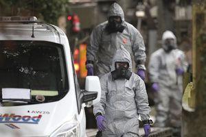 Nghị sỹ Đức khẳng định Nga không liên quan tới vụ đầu độc Skripal