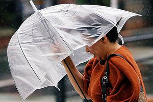 Hết lũ lụt và nắng nóng, Nhật Bản lại hứng chịu bão lớn Jongdari