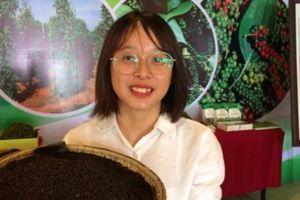Công bố chỉ dẫn địa lý 'hạt tiêu Quảng Trị: 'Vàng đen' sẽ có giá hơn