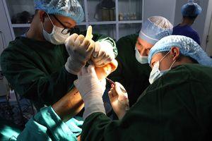 Địa chỉ hàng đầu về phẫu thuật chỉnh hình, dụng cụ chỉnh hình và phục hồi chức năng
