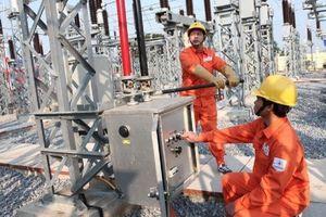 Cổ phiếu Tài chính Điện lực sắp lên sàn UPCoM