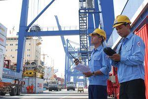 Doanh nghiệp cảng biển phân hóa hiệu quả vì sao?