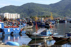 Biến âu thuyền và cảng cá Thọ Quang thành điểm 'ngắm cảnh, ăn uống, vui chơi'?