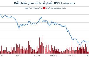 Em trai lãnh đạo Tôn Hoa Sen giải trình gì về bán cổ phiếu 'chui'