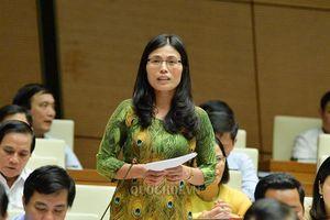 Đbqh Hồ Thị Minh - quảng trị: cần làm rõ thêm quy trình điều tra vụ án buôn lậu gỗ trắc tại Quảng Trị và Đà Nẵng