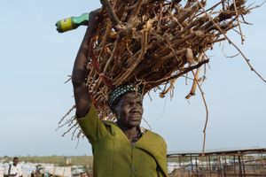 Phụ nữ Nam Sudan vào rừng lấy củi: Bị cưỡng hiếp hay cả nhà nhịn đói