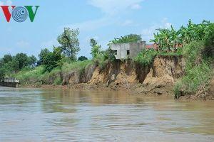 Sông Đồng Nai sạt lở, đất đai bị 'gặm' hàng chục mét