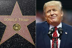 Thông qua đề xuất xóa bỏ ngôi sao của Tổng thống Trump trên Đại lộ Danh vọng