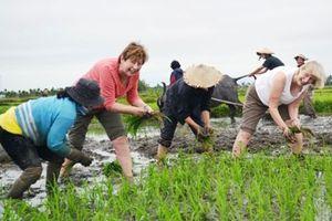 Phát triển du lịch cộng đồng ở Việt Nam