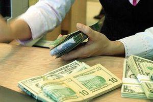 Tỷ giá trung tâm không đổi, tỷ giá tại các ngân hàng biến động nhẹ