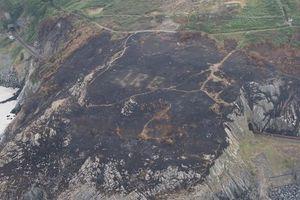 Ký hiệu quan trọng trong Thế chiến II vô tình được phát hiện do cháy rừng