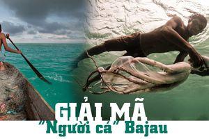 Giải mã 'Người cá' Bajau
