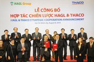 Thủ tướng ghi nhận sự hợp tác giữa THACO và Hoàng Anh Gia Lai