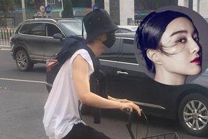 Em trai Phạm Băng Băng xuất hiện trên đường phố Bắc Kinh giữa ồn ào của chị gái