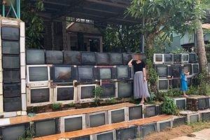 Nhà có hàng rào bằng ti vi ở Phú Quốc siêu độc trên báo ngoại