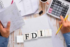 Xuất nhập khẩu Việt Nam đang phụ thuộc nhiều vào FDI