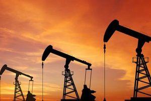 IEA cảnh báo nguy cơ gián đoạn nguồn cung dầu mỏ vẫn hiện hữu