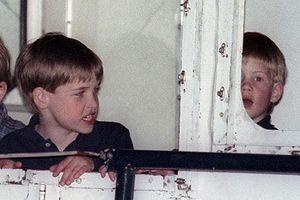 Khoảnh khắc đáng yêu thời thơ ấu của anh em Hoàng tử William-Harry