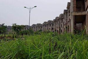 Nhiều 'ông lớn' BĐS bị Hà Nội bêu tên vì 'ôm' đất rồi bỏ hoang