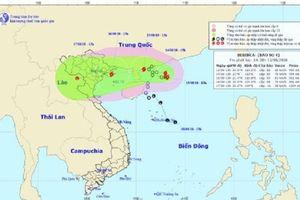 Công điện chỉ đạo triển khai giải pháp phòng chống bão số 4